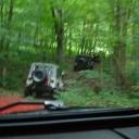 Jeep Jamboree 2006 085
